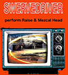 cover: SWERVEDRIVER
