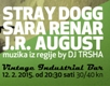 cover: Muzika Je Zvonko Radost: Stray Dogg, Sara Renar i J.R. August @ Vintage Industrial Bar, 12/02/2015